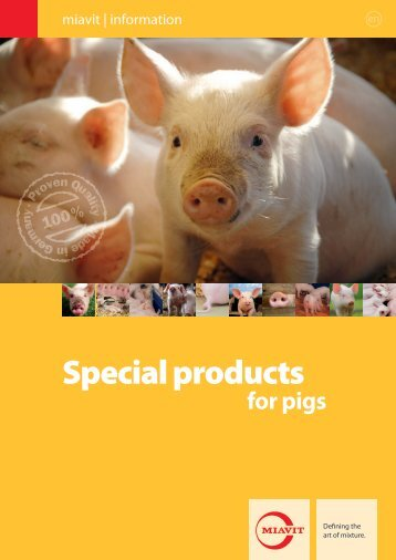 Flyer special products for pigs - MIAVIT