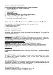 ANLAGE ZUR IMMATRIKULATIONSSATZUNG ... - HIT-Karlsruhe
