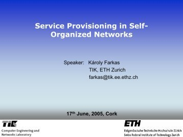 Service Provisioning in Self- Organized Networks
