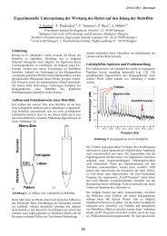 Experimentelle Untersuchung der Wirkung des Rohrs auf den Klang ...