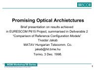 Promising Optical Network Architecture