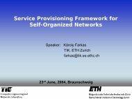 Service Provisioning Framework for Self-Organized Networks