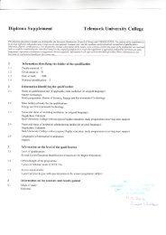 Example of Diploma Supplement (PDF, 2.94 MB) - Høgskolen i ...