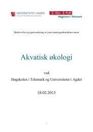 Vedlegg 1b S-sak 23_13 Søknad fra HiT - Høgskolen i Telemark