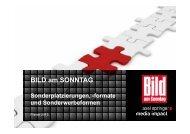 formate und Sonderwerbeformen 2013 - Axel Springer MediaPilot