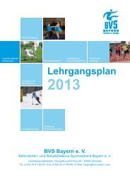 Download des BVS-Lehrgangsplans 2013 - Behinderten- und ...