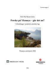 Elektronisk versjon (pdf) her - Høgskulen i Volda