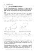 Elektronenmikroskopische Kontrastierung zur Visualisierung ... - Seite 7
