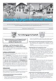 Landtags- und Bezirkswahlen 2013 und ... - Gemeinde WALD