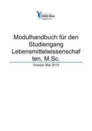 Modulhandbuch - Hochschule Rhein-Waal