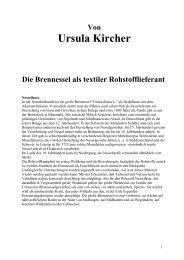 Microsoft Word _ Nessel_doc - Kircher