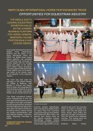 download PDF file - HORSE TIMES Magazine