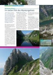 Juli_Alpines Klettern im Alpstein