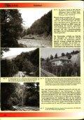 Holztransport zu Lande. zu Wasser. auf Schienen - Seite 5