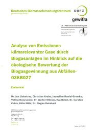 Download - Deutsches Biomasseforschungszentrum