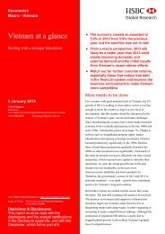 2013 : Vietnam at a glance - HSBC