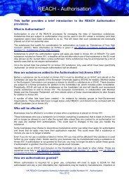 REACH - Authorisation - HSE