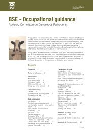 BSE - Occupational guidance (WEB22) - HSE