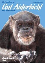 Magazin zum Download - Die Pfote