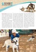 Mach Dich stark für Hunde und Katzen - International Fund for ... - Page 3