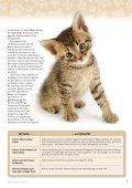 Mach Dich stark für Hunde und Katzen - International Fund for ... - Page 7