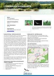 LIEBENAUER KIESGRUBEN - NABU-Stiftung Nationales Naturerbe