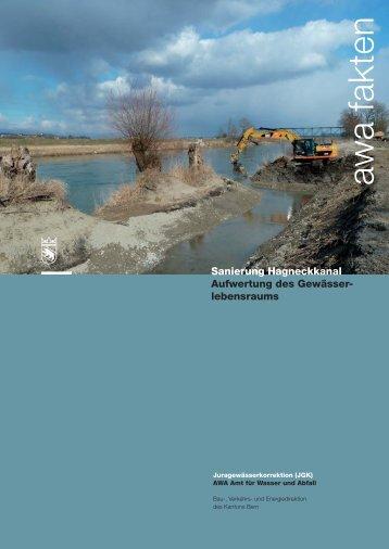 Aufwertung des Gewässerlebensraums - Bau-, Verkehrs - Kanton Bern