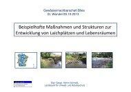 Beispielhafte Maßnahmen und Strukturen zur Entwicklung von ... - GfG