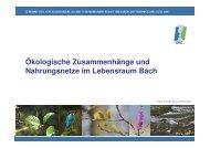13_tlwl_v1-tp-Nahrungsbaum Lebensraum-Bach - GfG