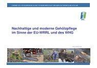 Vortrag 3 Praktische Beispiele am Gewässer von nachhaltigen ... - GfG