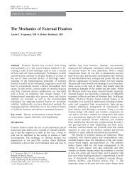 The Mechanics of External Fixation - Springer