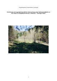 PDF-Dokument 2,0 MB - Biosphärenreservat Vessertal-Thüringer ...