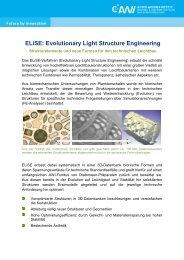 ELiSE: Evolutionary Light Structure Engineering