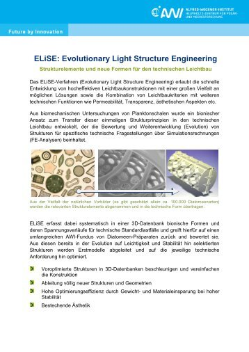 ELiSE: Evolutionary Light Structure Engineering