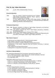 cv hinrichsen homepage english rev march 2009