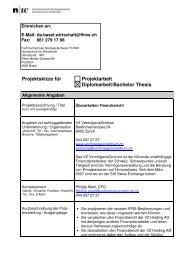 Projektskizze Überarbeiten Finanzbericht_04.09 - Hsw-basel.ch