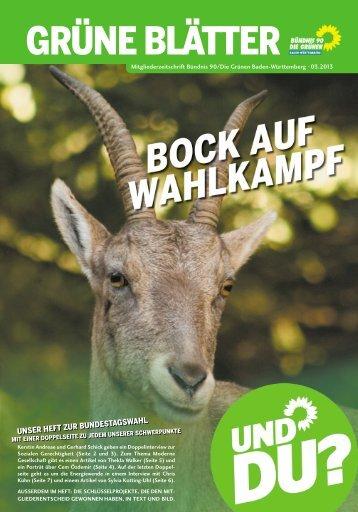 Bock auf Wahlkampf (PDF) - BÜNDNIS 90/DIE GRÜNEN Baden ...