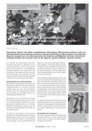 """""""Garteln"""" für Schmetterlinge - Naturschutzbund NÖ"""