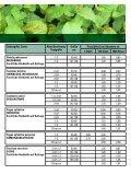 Preisliste 2013/2014 - Murauer Forstpflanzen - Seite 7