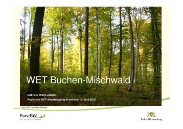 6_Wicht_WET Arbeitstagung Bu_21.05.2013 - ForstBW
