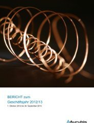 Hier finden Sie den Bericht zum Geschäftsjahr 2012/13 - Aurubis