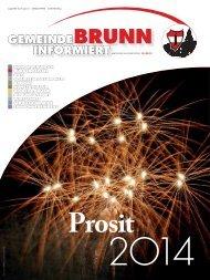Gemeindezeitung 10/2013 - Brunn am Gebirge