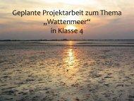 """Geplante Projektarbeit zum Thema """"Wattenmeer"""" - Dr. Hans Toman"""