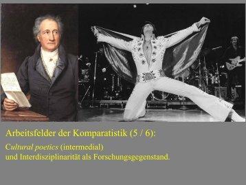 Arbeitsfelder der Komparatistik 6 - Heinrich Detering