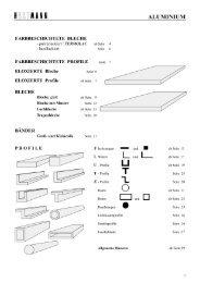 g - HUECK + RICHTER Aluminium GmbH