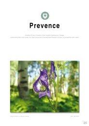prevence (1.2 MB) - Hu-Fa Dental