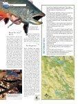 Artikel von Martin Falklind - Seite 4