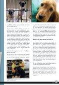 rEttunGsaktion - Tierheim Nürnberg - Seite 3