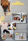bitte hier klicken... - Pro Animale - Seite 6