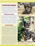 pdf-download - Magazin Freiheit für Tiere - Page 2